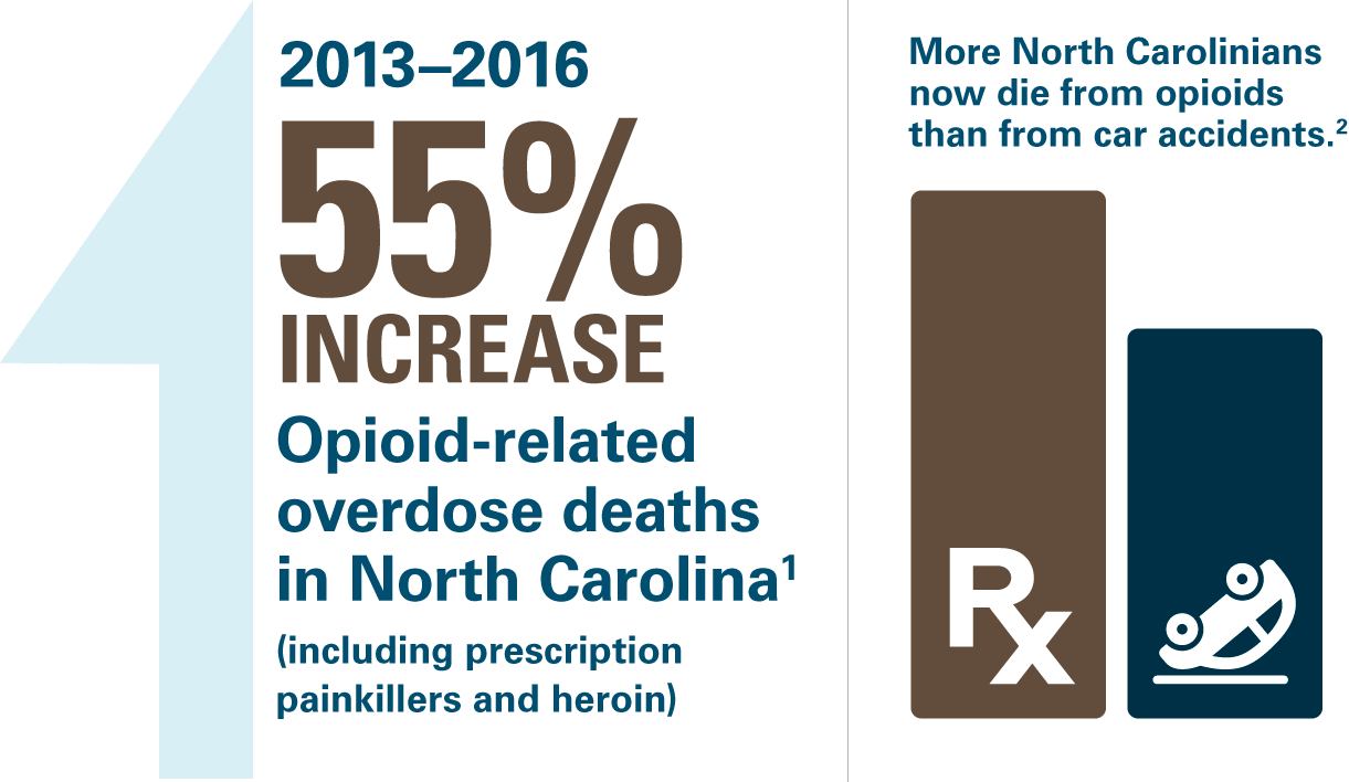 opioid epidemic human toll in NC